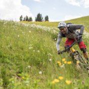 Mountainbike Fahrtechniktrainer Fortbildung
